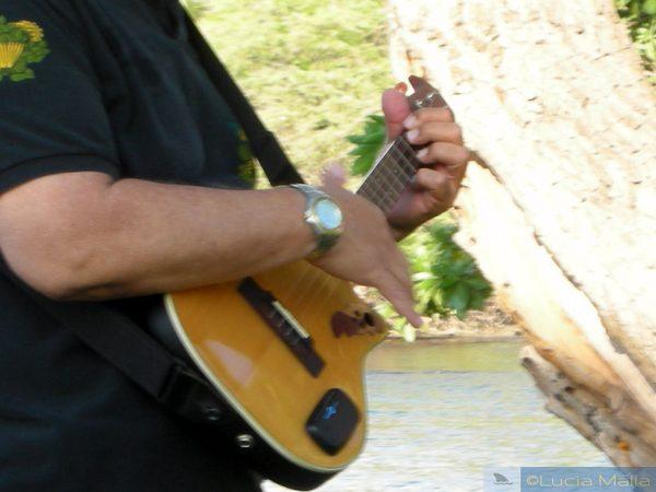 A história do ukulele