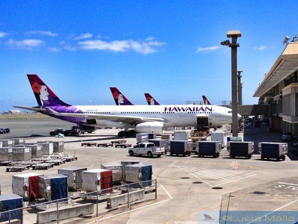 Melhores vôos para o Havaí