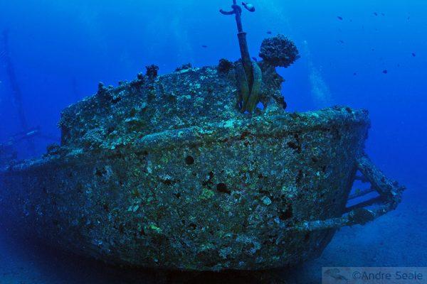 Sexta Sub - mergulho no naufrágio Mahi